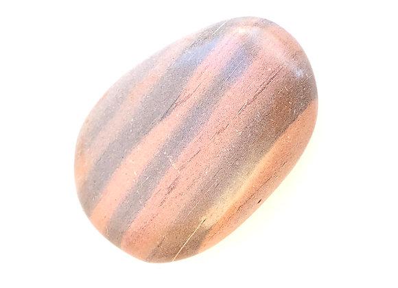 Print Stone Jasper Palm Stone