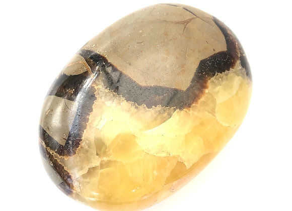 Septarian Polished
