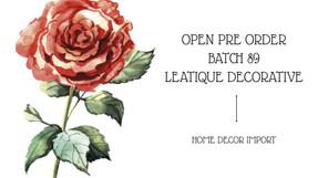 Open Pre Order Import Batch 89