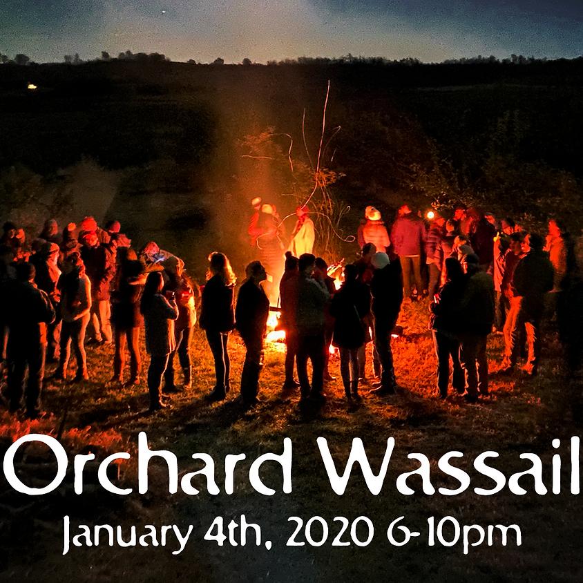 Wassail 2020