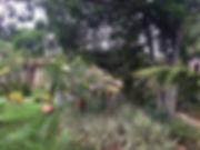 Aula nos jardins do espaço Flor de Lótus em Lagoa Santa/MG