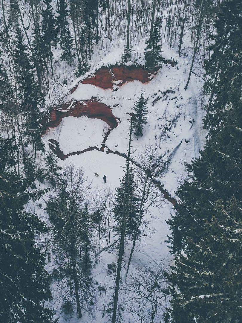 Taavid Meedia aerofoto droonifoto liivap