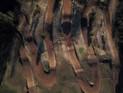 Taavid Meedia aerofoto droonifoto ainja