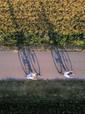 Taavid Meedia aerofoto droonifoto jalgra