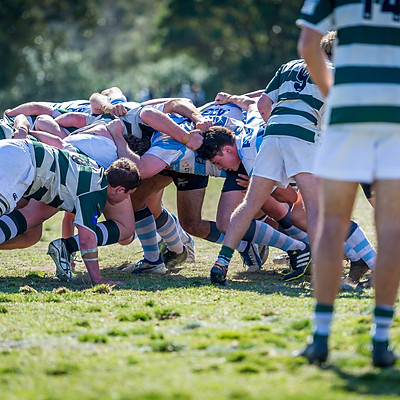 Lindfield Colts Rugby 2017