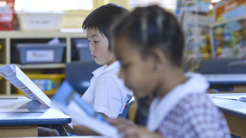 BOSTES Naplan Literacy Marking