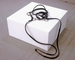 Untitled [Horse/Harness] (2001)