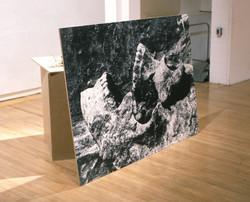 Untitled [Portrait]  (1998)