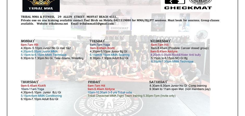 New Tribal timetable4.jpg