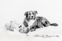 hond met baby