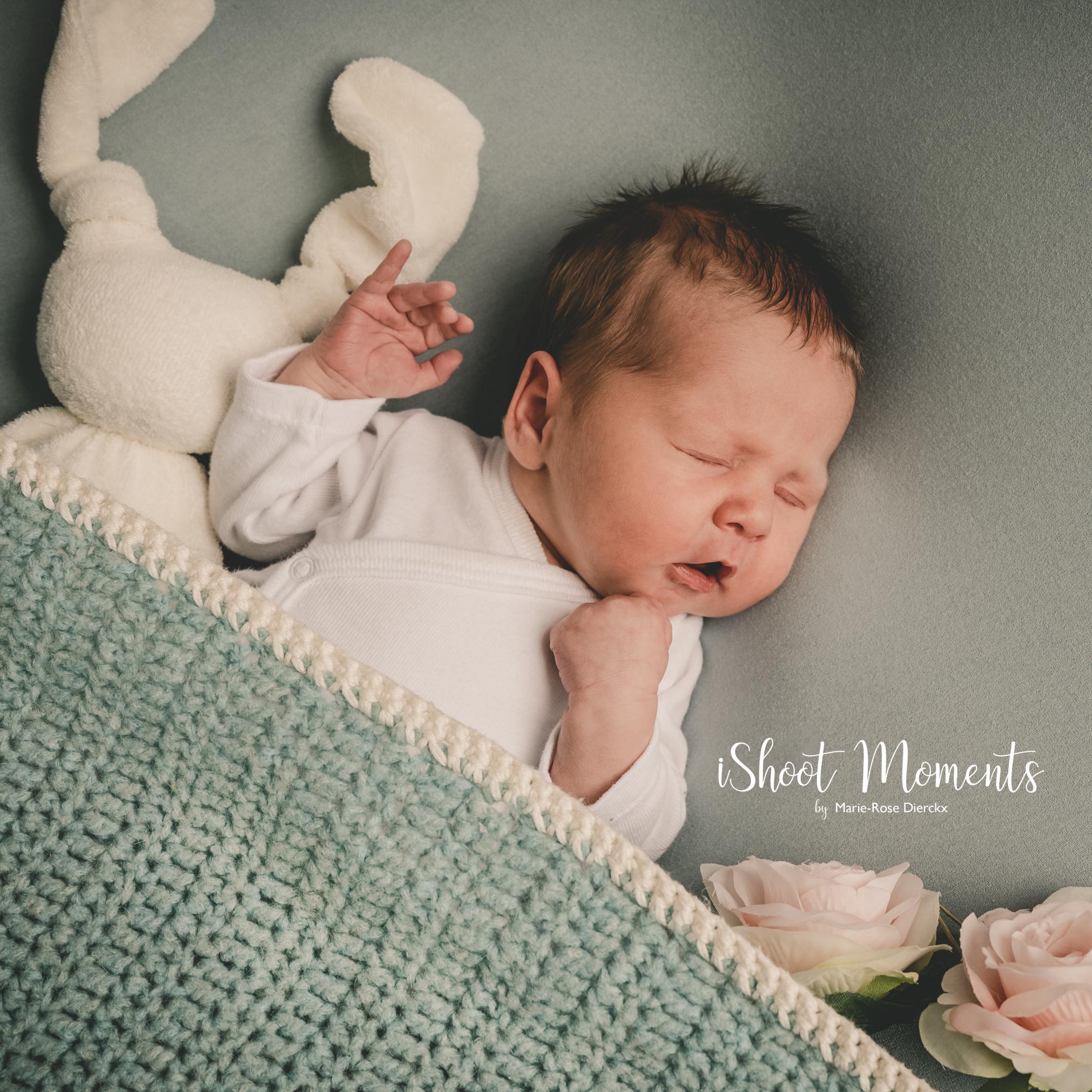 newbornfotoshoot, Antwerpen