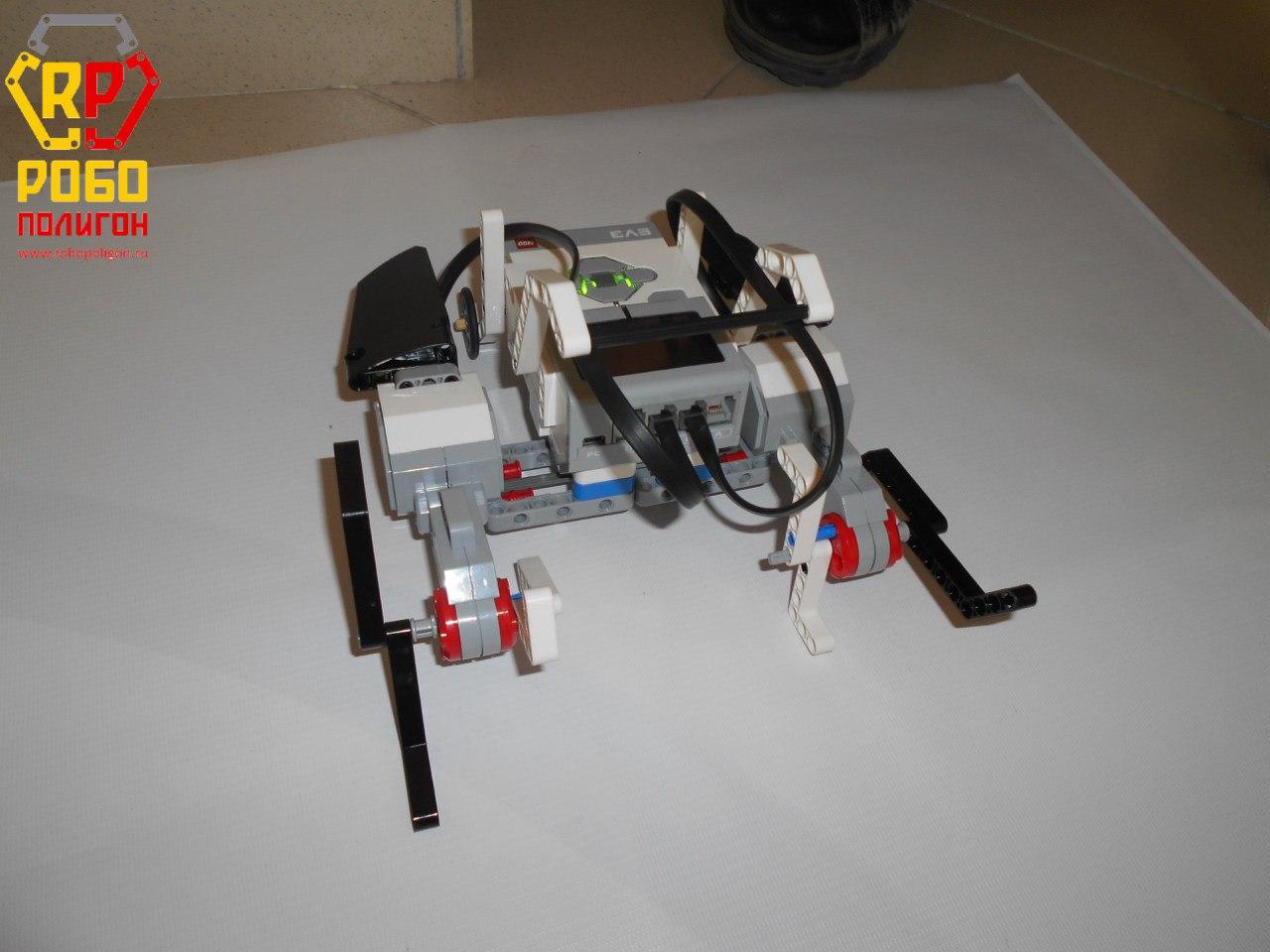 robopoligon_RoboLab-2(3)