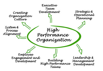 NXTLEVEL CONSULTING, Organizational Development Consulting