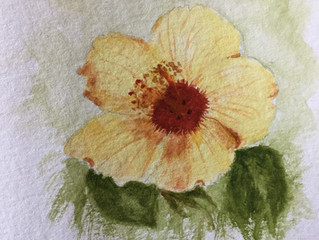 Latest creations of art cards in watercolour, flowers in bloom