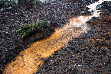 Muddy Stream