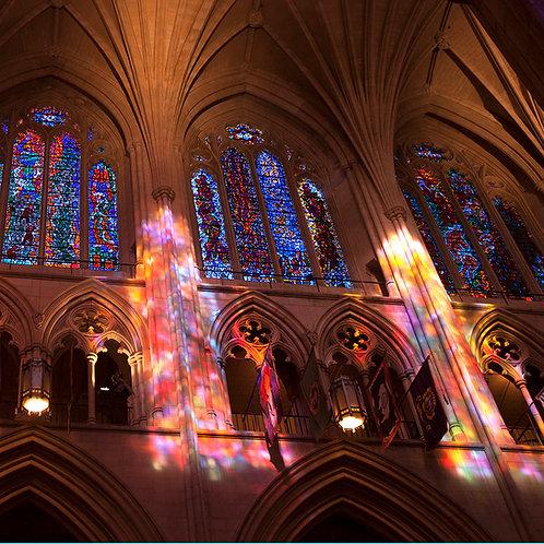Winter Solstice Safari at the Washington National Cathedral