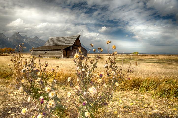 Mormon Barn #2