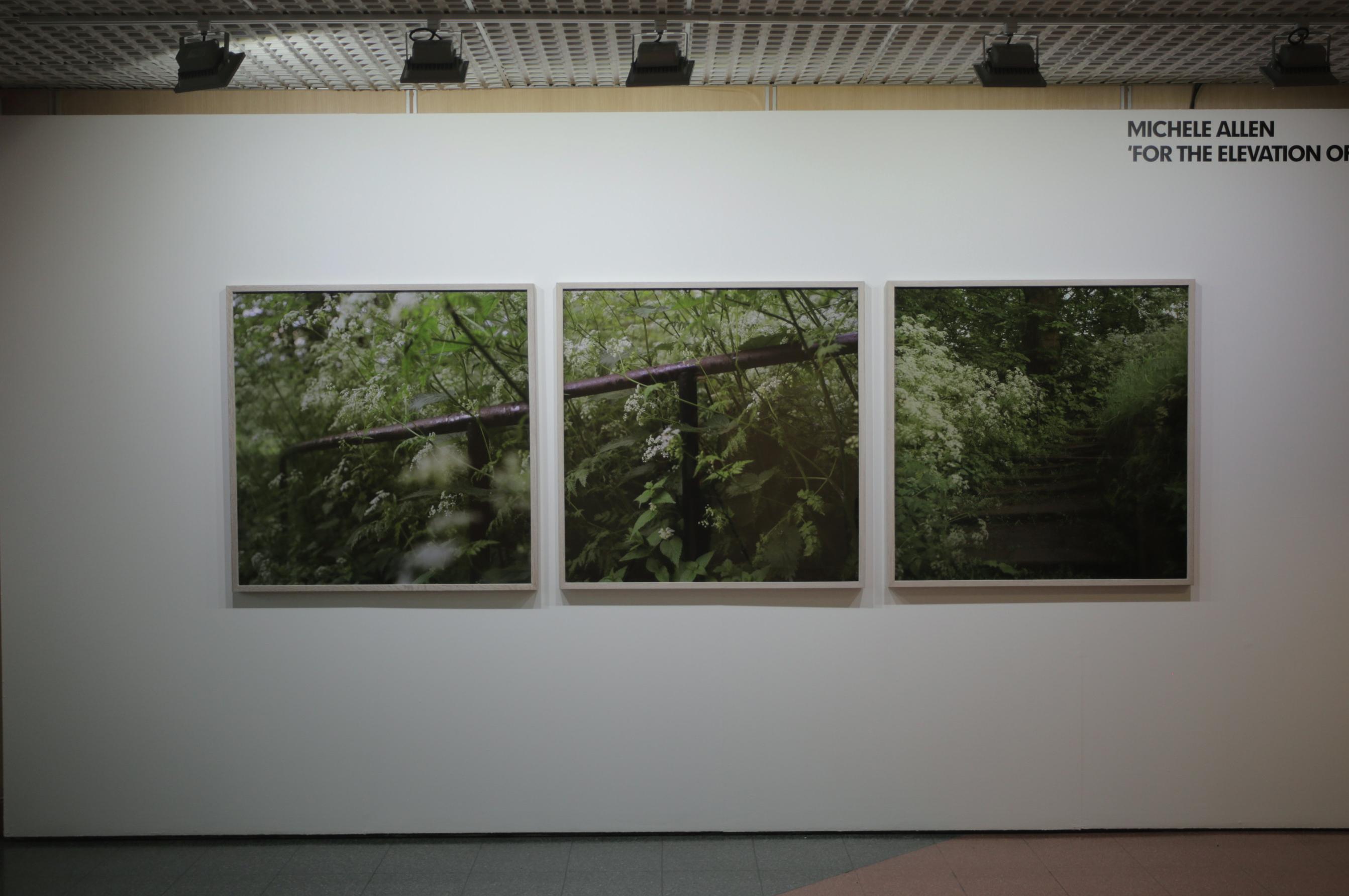 triptych crop