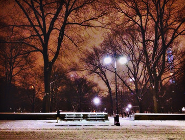 002 Snowy Wedding Evening in Central Par