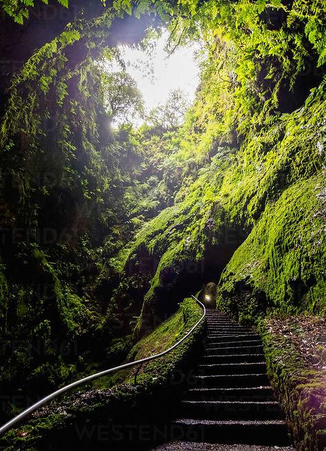 gruta-do-algar-do-carvao-cave-terceira-i