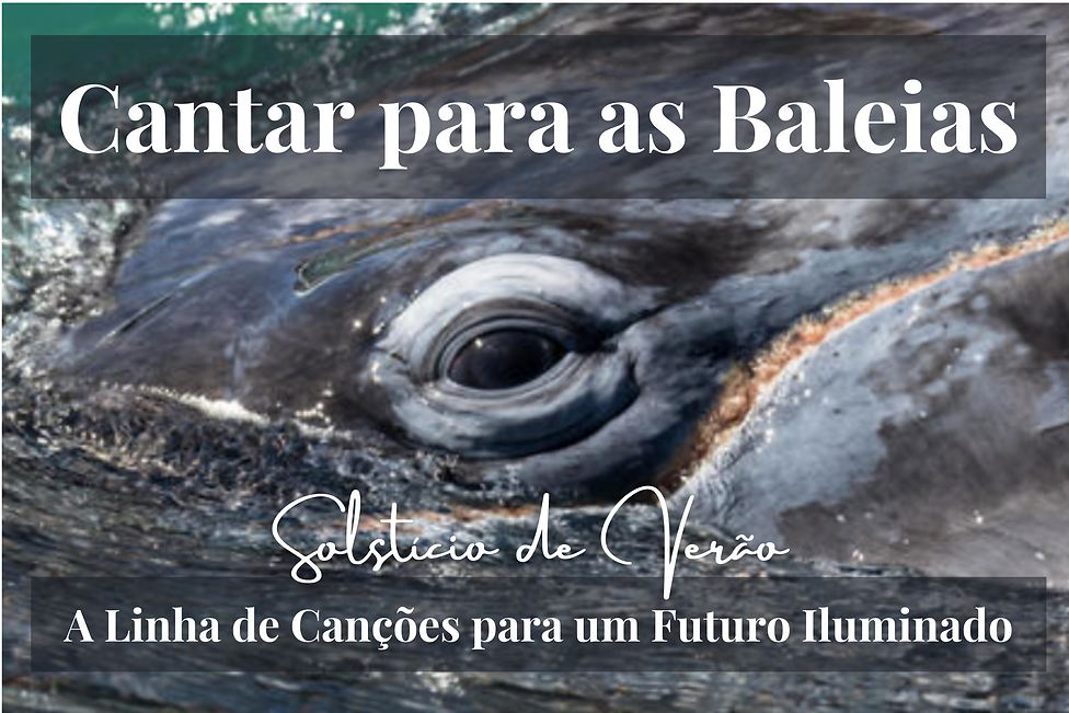 Sing to the Whales Solstice Portuguese.png