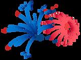 Rot und Blau Feuerwerk