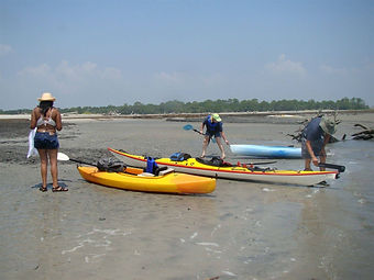 kayak group.jpeg