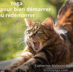Vidéo Séance de Yoga pour s'Etirer !!