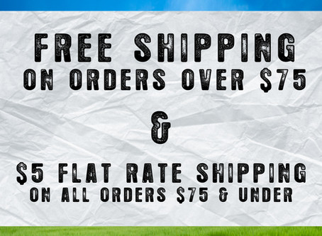 CELEBRATE WITH FREE SHIPPING!