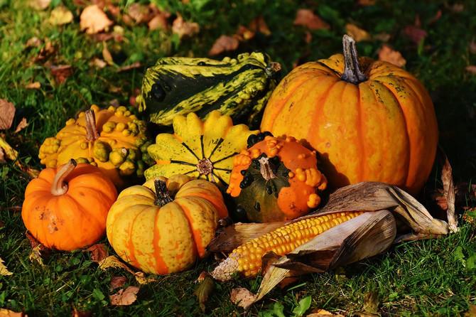 Thanksgiving Food Baskets