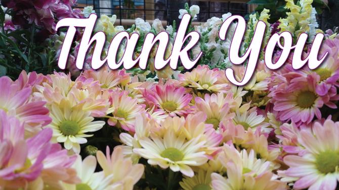 Thank You! | November Edition