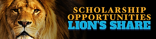 17002_foundation_lionsshare_1200x300.png