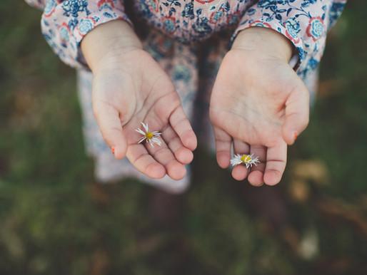 Stokrotka rozświetleniem duszy. Ręce jej alchemią.