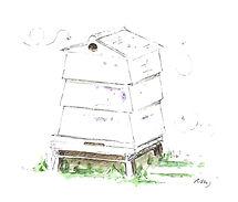 Beehive (Small).JPG
