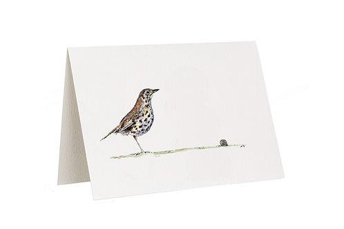 'Escargot' Thrush Card