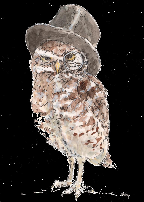 Little Owl Richard Cummerbund by Rebecca Day©
