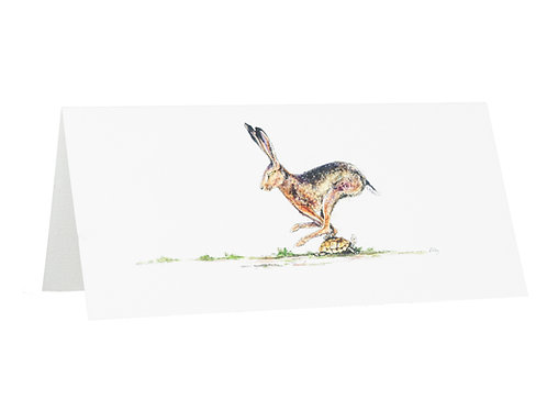 'The Hare & The Tortoise' Hare Card