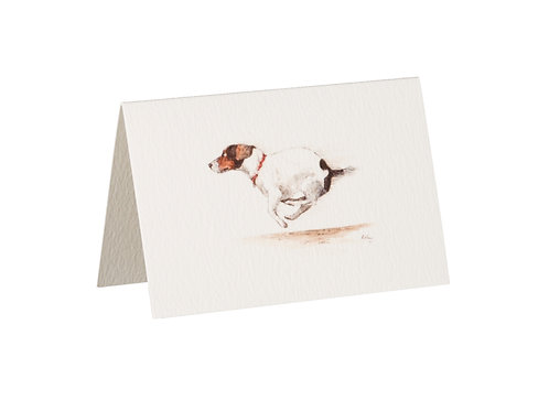 Jack Russell Boxed Mini Gift Cards
