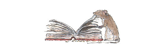 Shoutout Banner Diary Mouse.jpg
