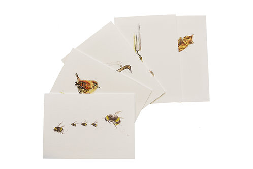 Note Cards From The Garden