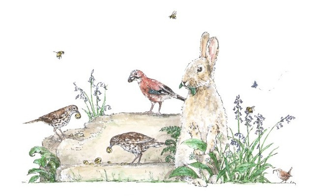 Picnicking On The Rockery By Rebecca Day