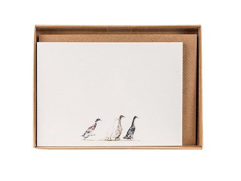 Runner Ducks Correspondence Postcards