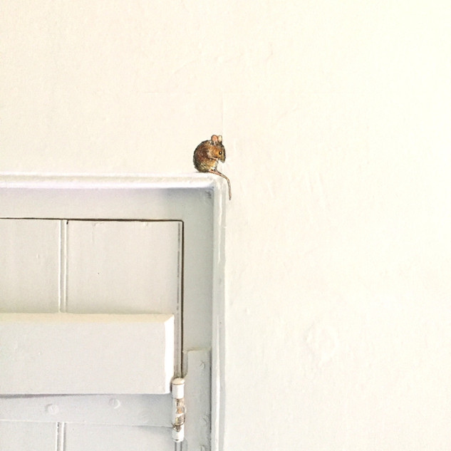 Mouse On Door Frame Wall Mural.jpg