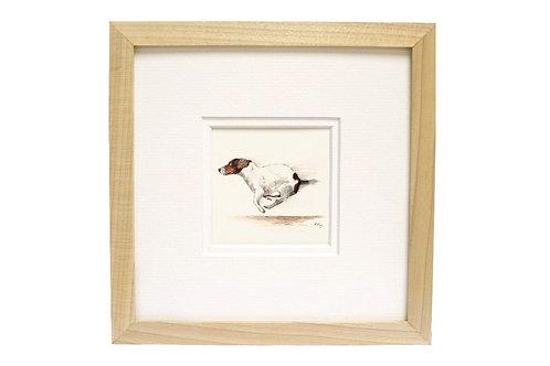 Jack Russell Terrier Print