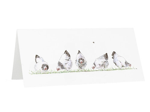 Spring Chicken Greetings Card