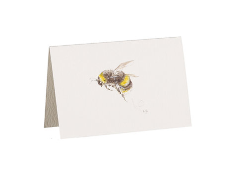 Bumblebee Boxed Mini Gift Cards