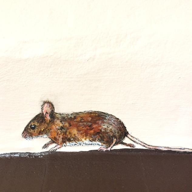 Running Mouse Wall Mural.jpg