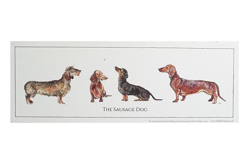 Rolled Sausage Dog Print