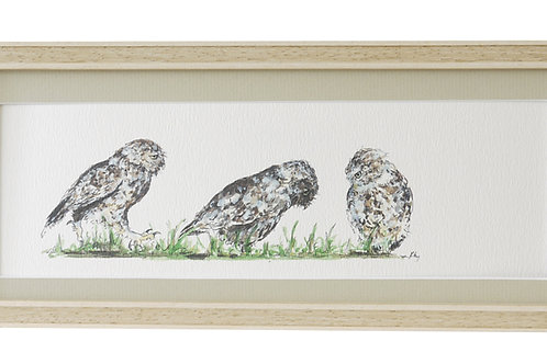 'Now That Is Interesting' Owl Print