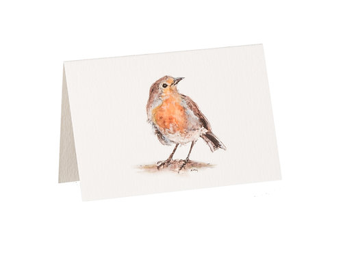 Robin Boxed Mini Gift Cards